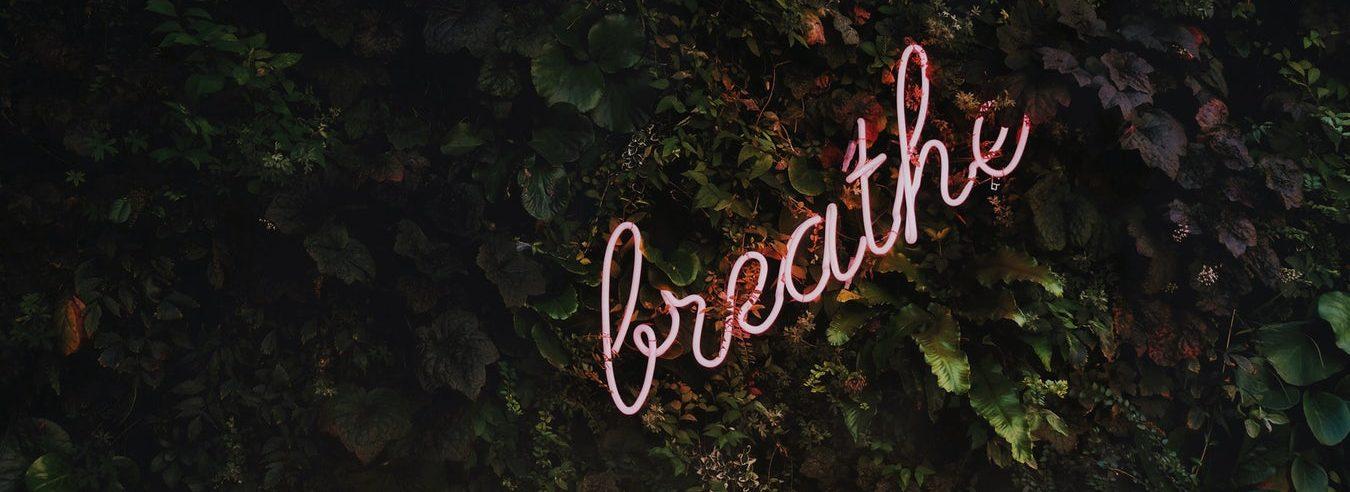 BREATHE e1603176850860